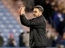 Hat mit Huddersfield Town das Achtelfinale des englischen Pokals erreicht: David Wagner