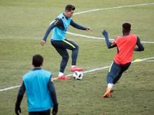 Roberto Frimino (M.) verzückt Brasilien-Coach Tite