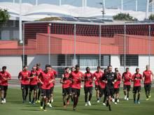 Die Profis des VfB Stuttgart schwitzten am Dienstag auf dem Trainingsplatz