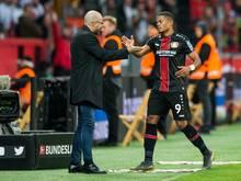 Peter Bosz (l.) pendelt mit Bayer Leverkusen zwischen den Extremen