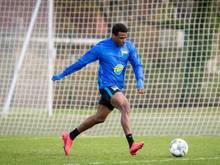 Hertha-Spieler Javairo Dilrosun beim Training
