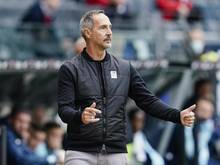Frankfurts Trainer Adi Hütter gestikuliert an der Seitenlinie während eines Spieles
