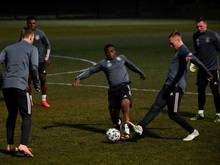 Ein Einsatz von Youssoufa Moukoko (M) gegen die Niederlande ist weiter offen. Foto: Marton Monus/dpa