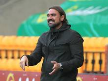 Daniel Farke, Trainer von Norwich City