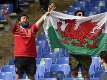 Zwei walisische Fans beim Stadionbesuch