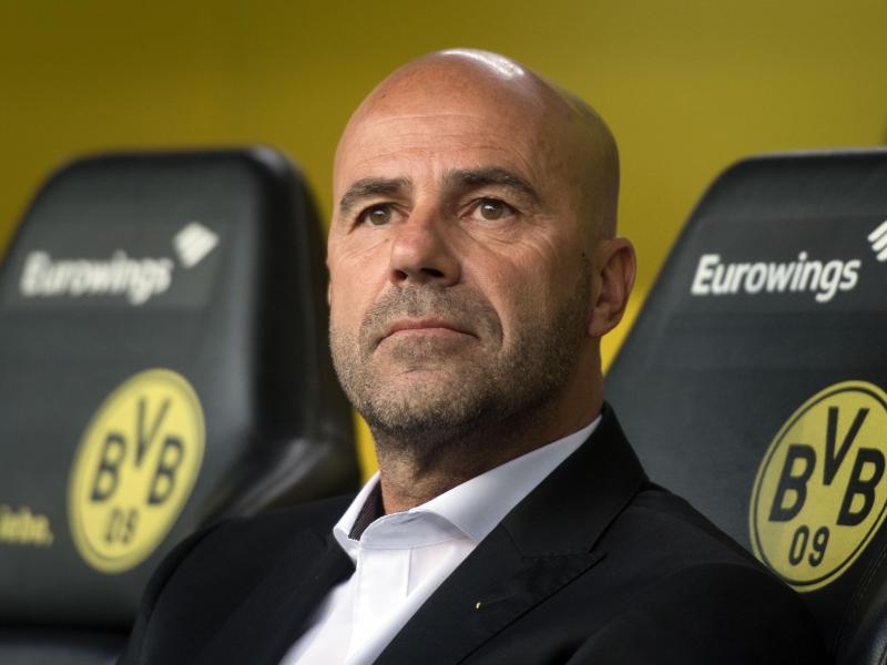 Trainer Peter Bosz will mit Borussia Dortmund die Bundesliga-Spitze verteidigen.