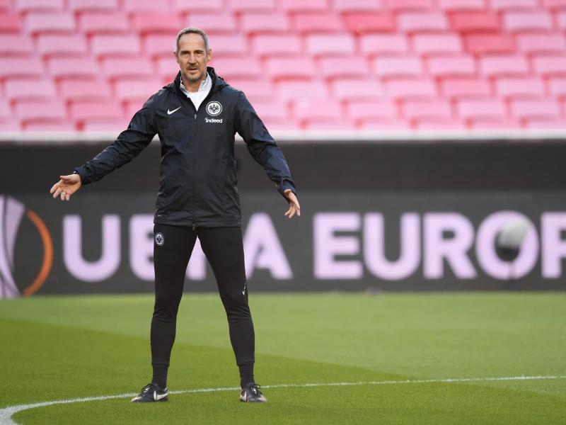 Liefert in Frankfurt erfolgreiche Arbeit ab:Trainer Adi Hütter