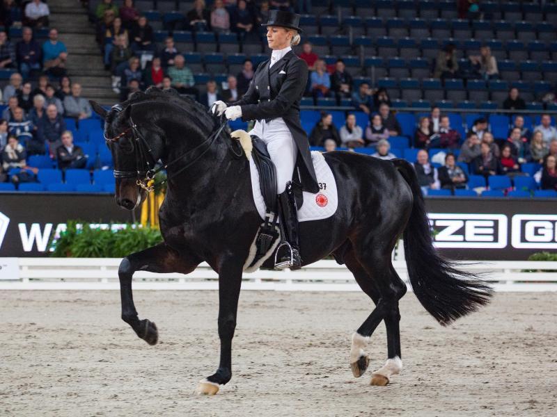 Isabell Werth auf ihrem Pferd Don Johnson