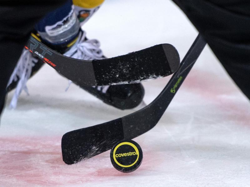 In den deutschen Eishockey-Ligen wurde die Saison wegen der Corona-Krise abgebrochen