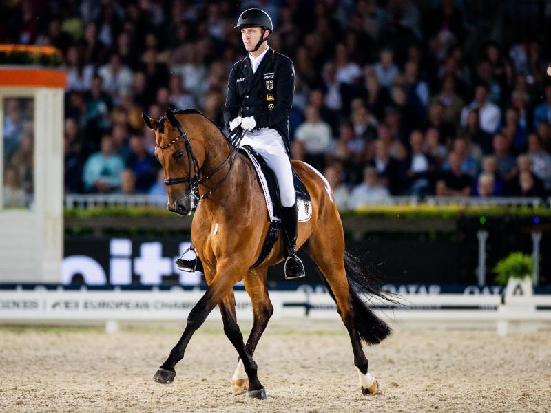 Die Pferdesport-EM 2021 fällt aufgrund der Corona-Krise aus