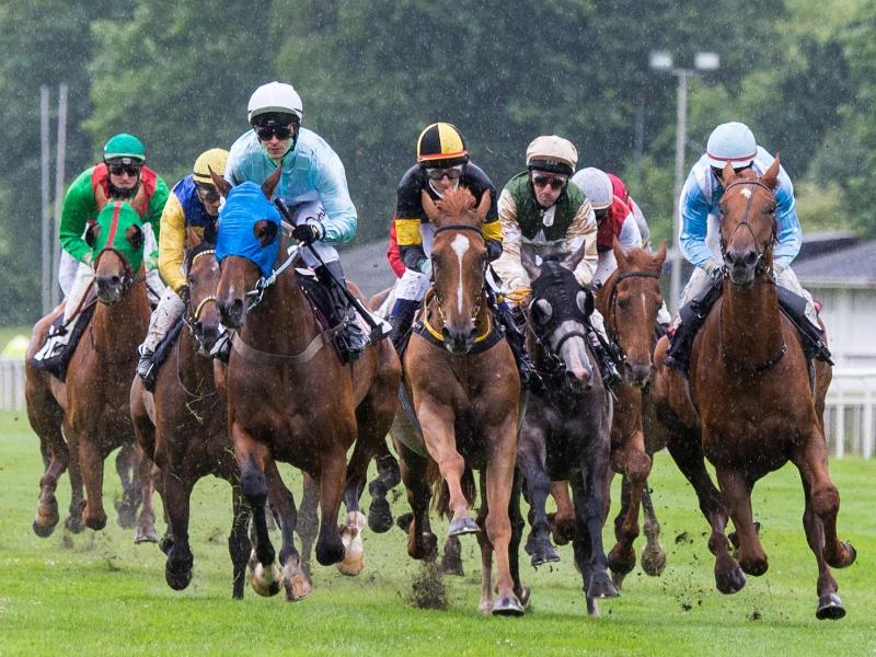 Im Regen galoppieren die Jockeys auf ihren Pferden über die Rennbahn in Hamburg-Horn