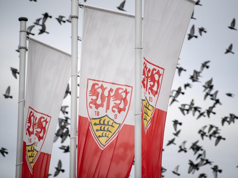 Aufsteiger VfB Stuttgart startet am 3. August in die Vorbereitung auf die neue Saison