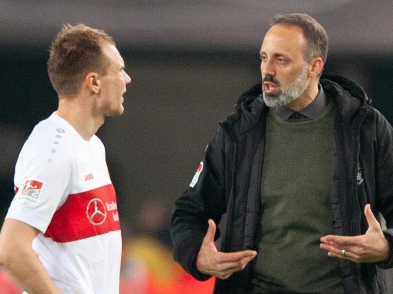 Matarazzo lässt Holger Badstuber (l) beim VfB Stuttgart noch eine Hintertür offen