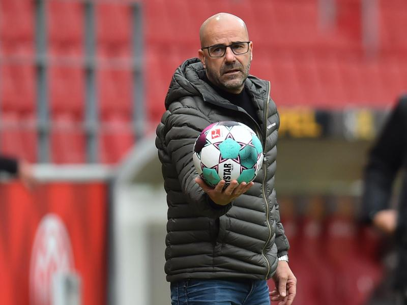 Leverkusens Trainer Peter Bosz trifft mit seinem Team auf OGC Nizza