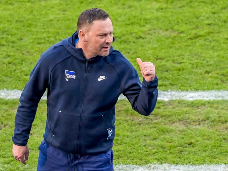 Hertha-Trainer Pal Dardai möchte, dass seine Spieler Energie auf dem Platz versprühen
