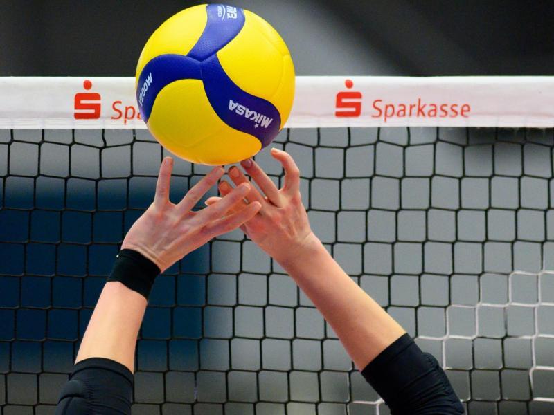 Die Volleyballerinnen des Dresdner SC stehen im Finale um die deutsche Meisterschaft