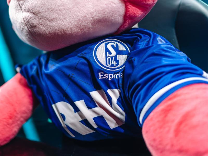 Zum Beginn der Gruppenphase der European Masters konnten die deutschen Teams, darunter das Nachwuchsteam von Schalke 04, die ersten Siege einfahren. Foto: Riot Games/dpa