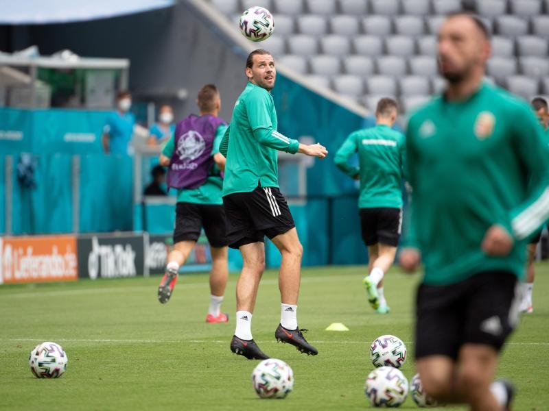 Ádám Szalai verlängerte seinen Vertrag in Mainz