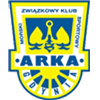 Arka Gdynia Männer
