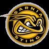 Sarnia Sting U21