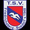 TSV Friedrichsberg-Busdorf Herren