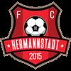 FC Hermannstadt Männer