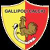 Gallipoli Herren