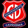 Independiente Herren