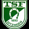 TSF Ditzingen Herren