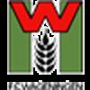 FC Wageningen Männer