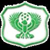 Al-Masry Club Männer