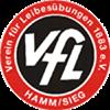 VfL Hamm/Sieg Herren