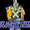 St. Albans City Herren