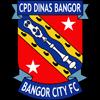 Bangor City Herren