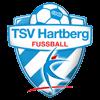 TSV Hartberg Herren