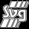 SVG Göttingen 07 Herren