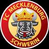 FC Mecklenburg Schwerin Herren