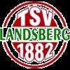 TSV Landsberg Herren