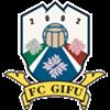 FC Gifu Herren
