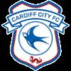 Cardiff City Herren