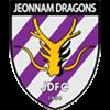 Jeonnam Dragons Herren