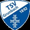 TSV Grunbach Herren