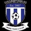 Collinstown FC