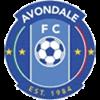 Avondale FC Männer