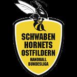Schwaben Hornets Ostfildern