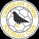 Cwmbran Town