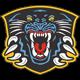 Nottingham Panthers