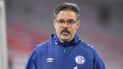 Trainiert Ex-Schalke-Coach David Wagner bald wieder in England?