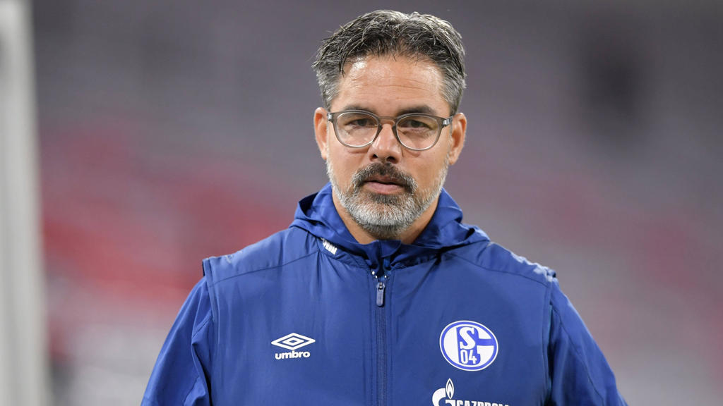 David Wagner steht beim FC Schalke 04 gehörig unter Druck