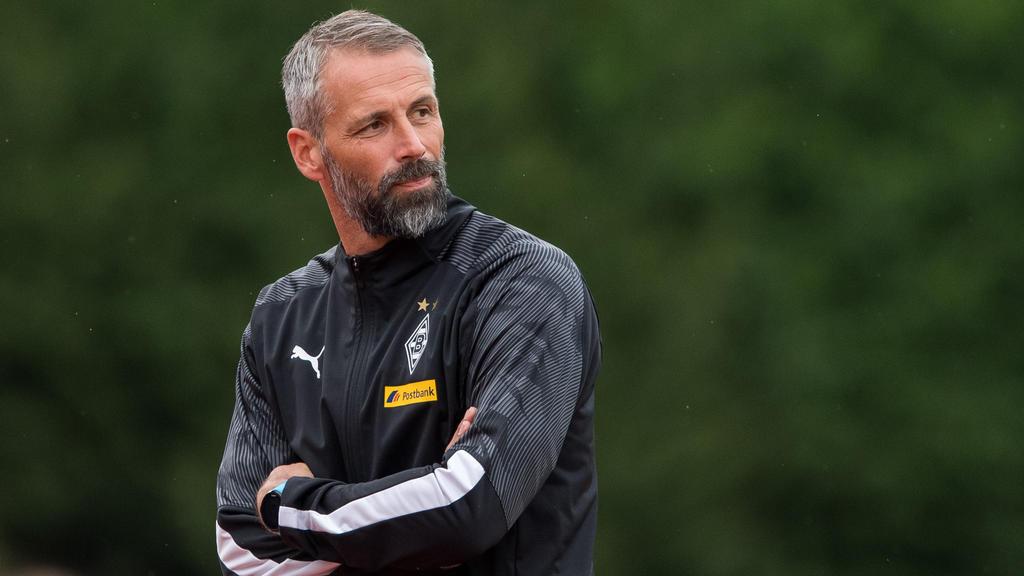 Marco Rose ist seit dem Sommer Trainer von Borussia Mönchengladbach